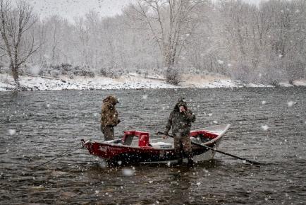 Snowy Salmon (1 of 1)